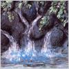 Fumio Miyashita: The healing Rain Forest: Water