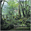 Hanclef / Forest Of Time (Original Motion Picture Soundtrack)